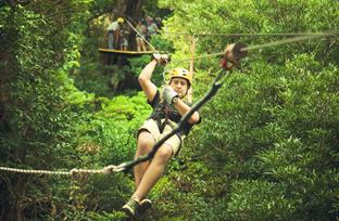 Canopy Adventure Tour