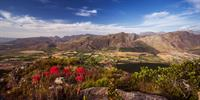 Leeu Estates - Franschhoek - Winelands - South Africa - Eden Luxury ...